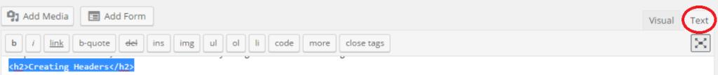 html view on wordpress